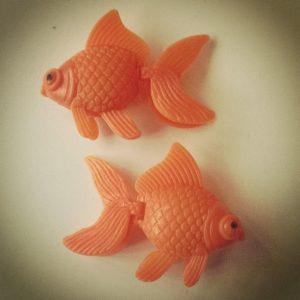 Goldfish (c) Antony Dunn